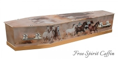 Free Spirit Coffin